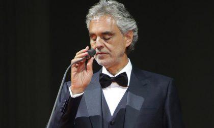 Morte del cane di Bocelli,  la Procura apre un  fascicolo