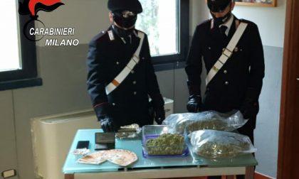 Senago: spacciava marijuana ed hashish, arrestato 24enne