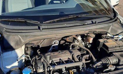 Ladri bizzarri: rubato il cofano ad un'auto