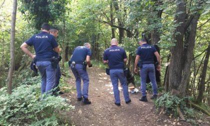 """Pusher dell'Altomilanese arrestato a novembre, rilasciato e tornato al """"lavoro"""" nei boschi: ora in carcere"""
