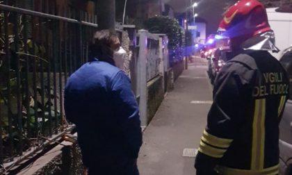 Palo della luce carico di tensione: feriti passanti e amici a quattro zampe