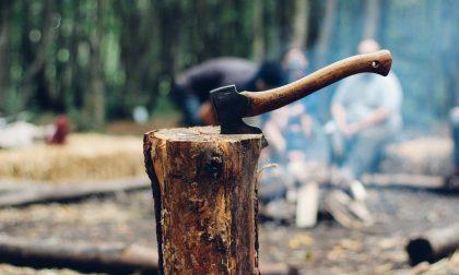 Contadino taglia un albero che cade su una passante