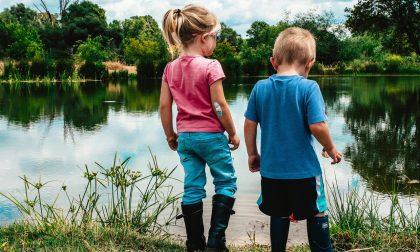 Welfare in Azione: l'invenzione dell'estate 2020