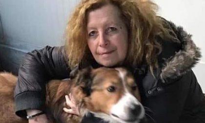 Incidente mortale in autostrada: addio all'animalista Elisabetta Barbieri