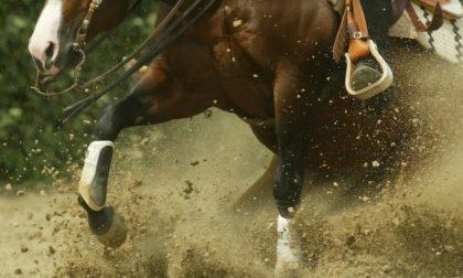 Ambulanza per una 19enne caduta da cavallo