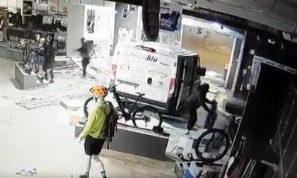 Sfondano la vetrina e fanno razzia di biciclette