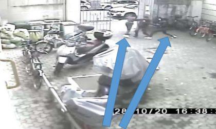 Baby gang al parco: la Polizia di Stato prende quattro minorenni