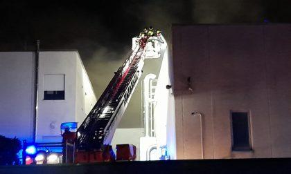 Grosso incendio in azienda, sul posto cinque mezzi dei pompieri