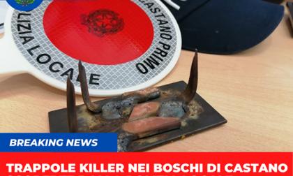 """Trappole killer nei boschi: """"Fate attenzione"""""""