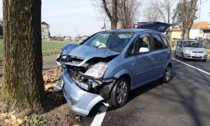 80enne finisce con l'auto contro un albero