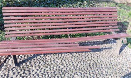 Atto vandalico al parco, lo sfogo dell'assessore