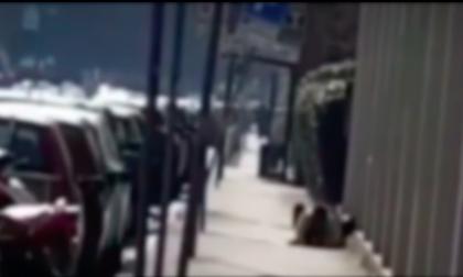 """Il video della """"scena hot"""" in pieno giorno a Milano: si accoppiano sul marciapiede"""