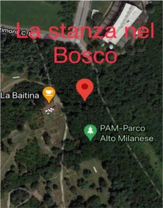 Parco Alto Milanese, una stanza nel bosco per incontrarsi e condividere