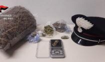Serra termoventilata e marijuana in casa: arrestato dai Carabinieri