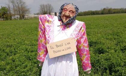 """""""Donna misteriosa"""" appare in un campo: altro mistero a Cantalupo"""