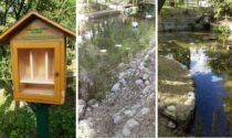 Vandalismo al fontanile di Corbetta: individuate due nomadi