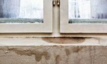 Problemi di umidità in casa: l'importanza di rivolgersi a degli specialisti