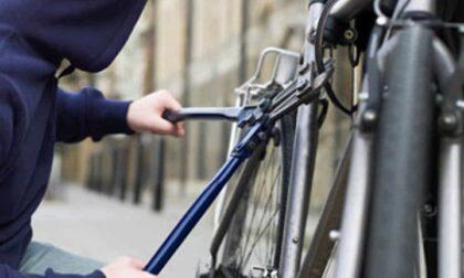 Furti di biciclette a Abbiategrasso