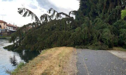 Il maltempo si è abbattuto anche sul Consorzio Est Ticino Villoresi