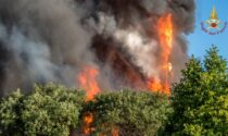 Incendio a Milano: le foto, i video, il gattino, Mahmood e il videoracconto di Morgan