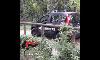 Rapinava i ciclisti nel Parco delle Groane, arrestato