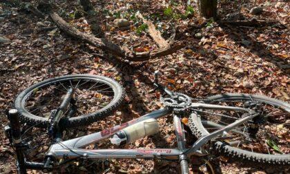 Ciclista si ferisce nel bosco: chiamati i Vigili del fuoco