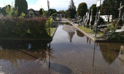 Allagato il cimitero di Nerviano