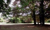 Onomastico della Terra: passeggiata didattica al Parco Ex Ila