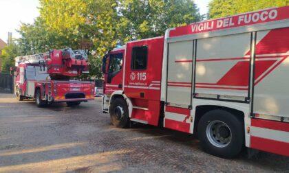 Principio d'incendio: Vigili del fuoco in azione